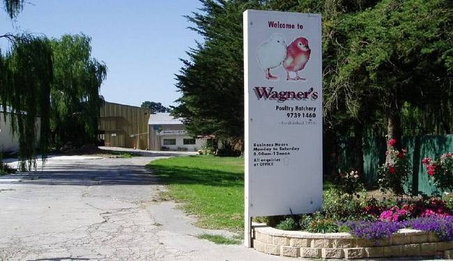 Wagners Poultry